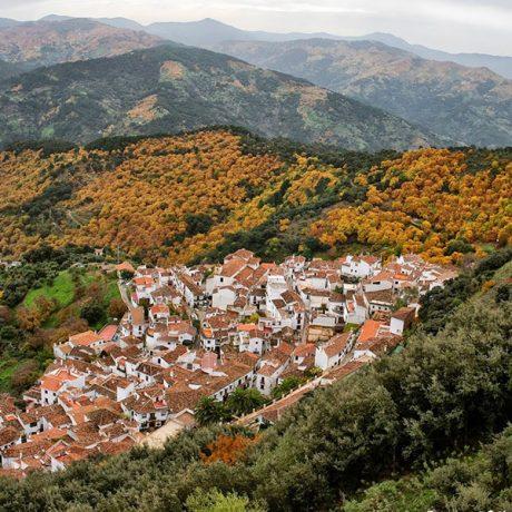 Cicerones-rurales-agroturismo-en-malaga-Aceite-Pan-y-Vino-Trilogia-Mediterranea-benalauria