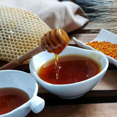 Cicerones-rurales-agroturismo-en-malaga-istan-una-dulce-manana-miel