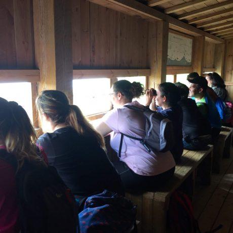 Cicerones-Rurales-turismo-malaga-birdwatching-aves- observación -reserva natural- naturaleza