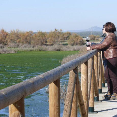 Cicerones-Rurales-turismo-malaga -cata -vino -degustacion -enoturismo -wine tasting -naturaleza -reserva natural  -denominacion origen -enoturismo -enologia