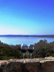 paisajes naturaleza reserva natural vino cata denominacion de origen enoturismo enologia wine tasting