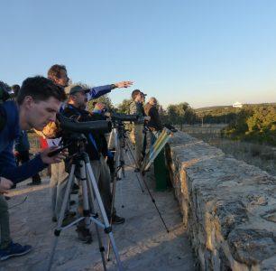 birdwatching observación de aves reserva natural naturaleza ruta