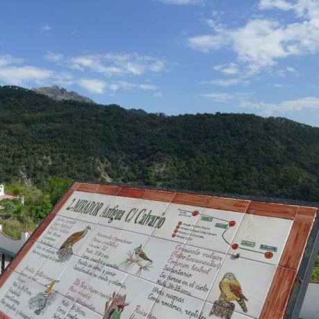 Cicerones-rurales-El-Bosque-dentro-y-fuera-3